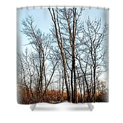 Fenced In Landscape Shower Curtain
