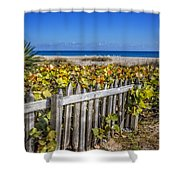 Fences On The Dunes Shower Curtain
