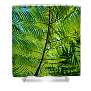 Fern Detail Shower Curtain by Himani - Printscapes