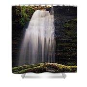 Fern Falls, Id Shower Curtain