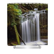 Fern Falls Shower Curtain