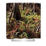 Fern Forest Floor Shower Curtain