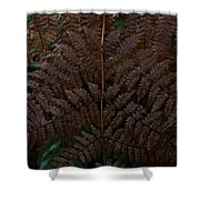 Fern Kaleidescope Shower Curtain