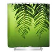 Fern On Green Shower Curtain