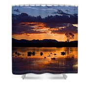 Fern Ridge Sunset Shower Curtain