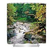 Fern River Oregon Shower Curtain