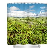 Ferns For Days Shower Curtain