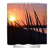 Ferry Beach Shower Curtain