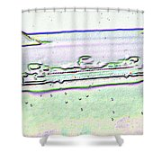 Ferry In The Rain Shower Curtain
