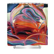 Fervor Shower Curtain