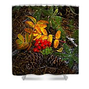 Festive Elements Shower Curtain