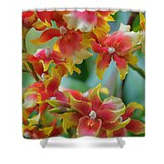 Festive Orchids Shower Curtain