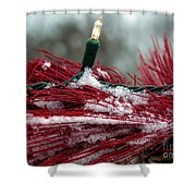 Festive With The Snow Shower Curtain