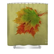 Feuilles D'automne I / Fall Leaves I Shower Curtain