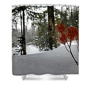 The Voice Of The Keweenaw Shower Curtain