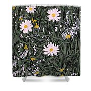 Field Daisies Shower Curtain