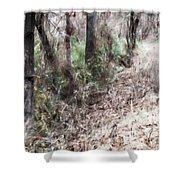 Field Meets Forest Shower Curtain