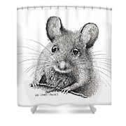 Field Mouse Or Meadow Vole Shower Curtain