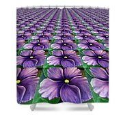 Field Of African Violets Shower Curtain