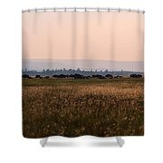 Field Of American Bison  Shower Curtain