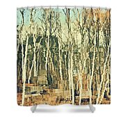 Field Of Birch Shower Curtain