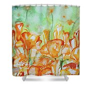 Field Of California Poppies Shower Curtain