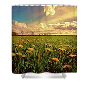 Field Of Dandelions At Sunset Shower Curtain