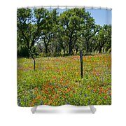 Field Of Fire Shower Curtain