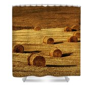 Field Of Gold #1 Shower Curtain