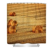 Field Of Gold #3 Shower Curtain