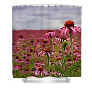 Field Of Health Shower Curtain