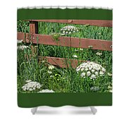 Field Of Lace Shower Curtain
