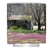 Field Of Lavender  Shower Curtain