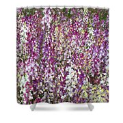 Field Of Multi-colored Flowers Shower Curtain