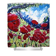Field Of Poppies 02 Shower Curtain