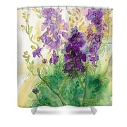 Field Of Purple Shower Curtain