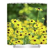 Field Of Smiles Shower Curtain