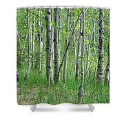 Field Of Teens Shower Curtain