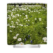 Field Of White Poppies Shower Curtain