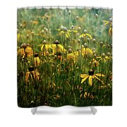 Field Of Yellow 2498 Idp_2 Shower Curtain