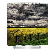 Field Of Yellow Flowers Shower Curtain