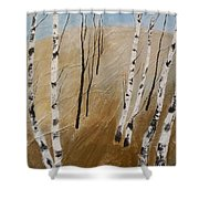 Field With Birches Shower Curtain