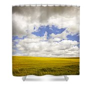 Field With Dramatic Sky. Shower Curtain
