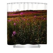 Fields In Pink Shower Curtain