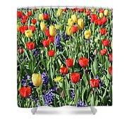 Fields Of Beauty 62 Shower Curtain