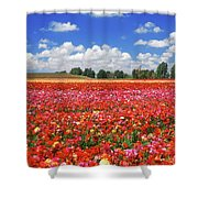 Fields Of Flowers At Nir Banim Shower Curtain