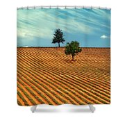 Fields Of Provence Shower Curtain