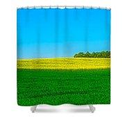 Fields Of Summer Shower Curtain