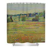 Fields Of Texas Wildflowers Shower Curtain