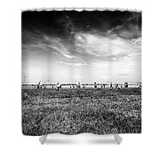 Fields Of The Elysium Locomotive Shower Curtain